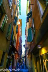 Sphere-web rue colorée à Nice