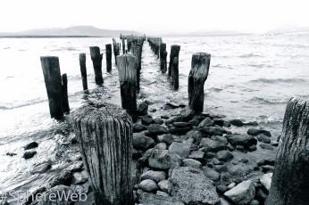 Sphère Web-vieux port en Patagonie