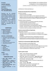 CV-ingenierie-formation-et-conseil-en*formation